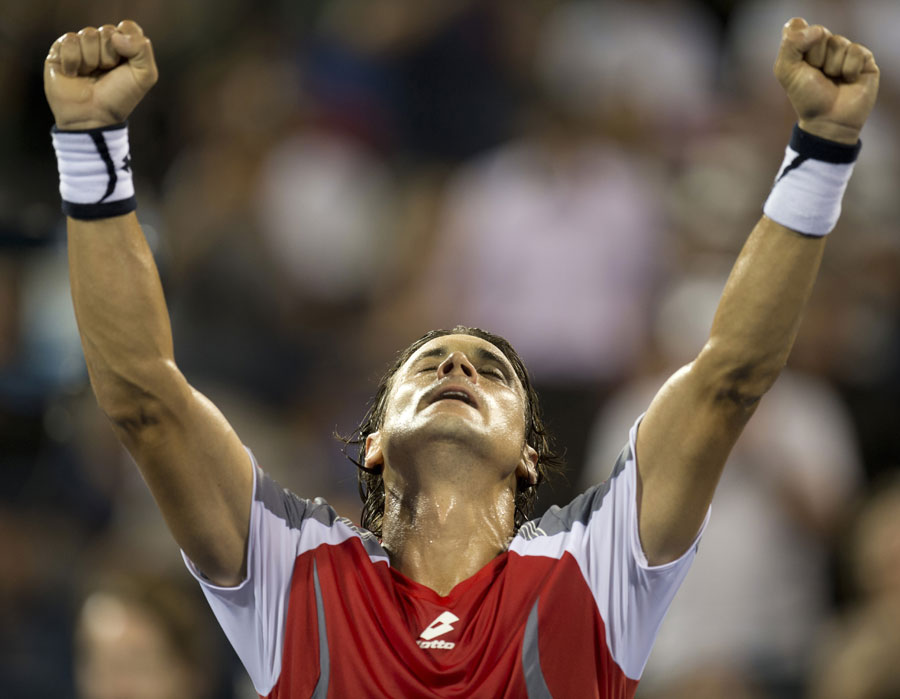 41931 - Ferrer sends Spain into Davis Cup final
